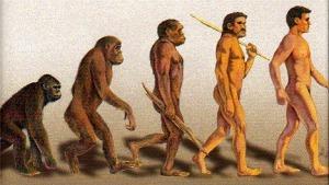 evolution_468x264